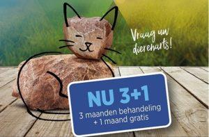 3+1 gratis bij Dierenarts Breukelen